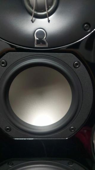 Revel Ultima Salon 2 Loudspeaker 11_jfi10