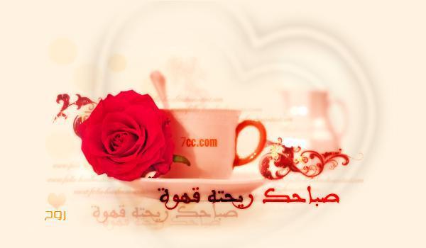 Bonjour tout le monde - Page 21 60361010