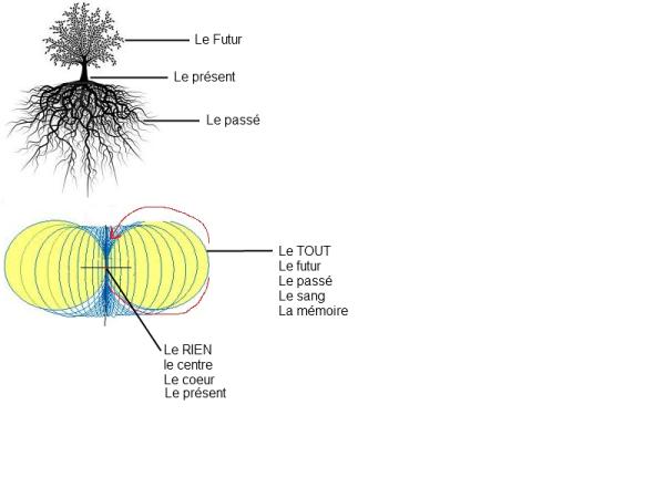 L'arbre-univers L_arbr10