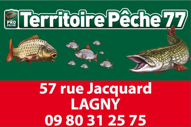 Nouveau magasin de pêche à Lagny-sur-Marne / Saint-thibault-des-vignes Territ10