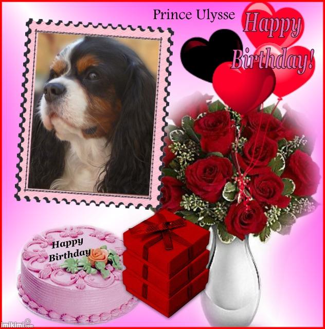 Bon anniversaire Prince Ulysse !  1sxw9-16