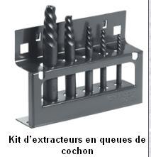 question extracteurs de vis et de goujons. Black Bedroom Furniture Sets. Home Design Ideas