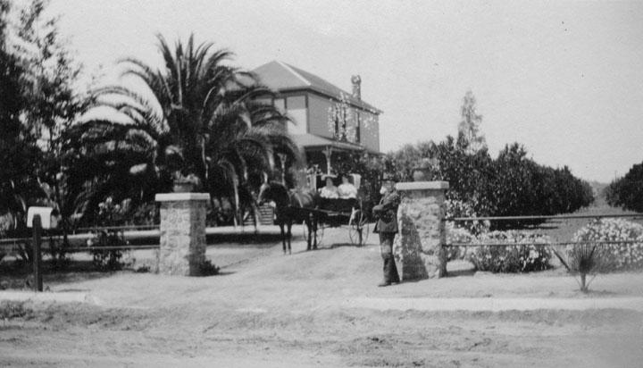 LA History - Page 2 Hollyw11