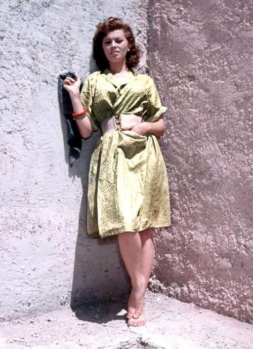 Sophia Loren is 75! - Page 4 Tumbl884