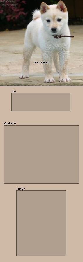 Ma galerie - Page 3 Fiche_11