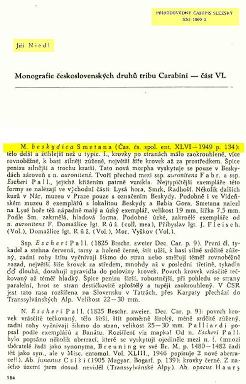 [C.(Chrysocarabus)auronitens escheri] n.beskydica Kopie_14