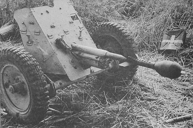 Panzerjaegerabteilung-Détachement des chasseurs de char Stielg10