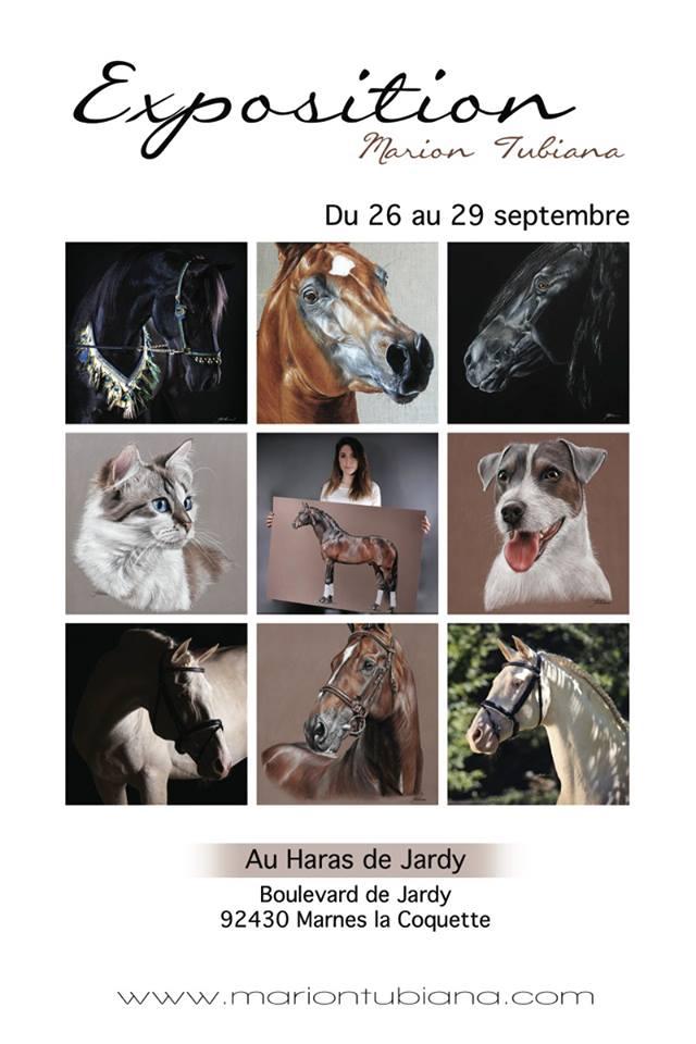 Marion Tubiana - Pastel et Photographie  - Page 3 56234810