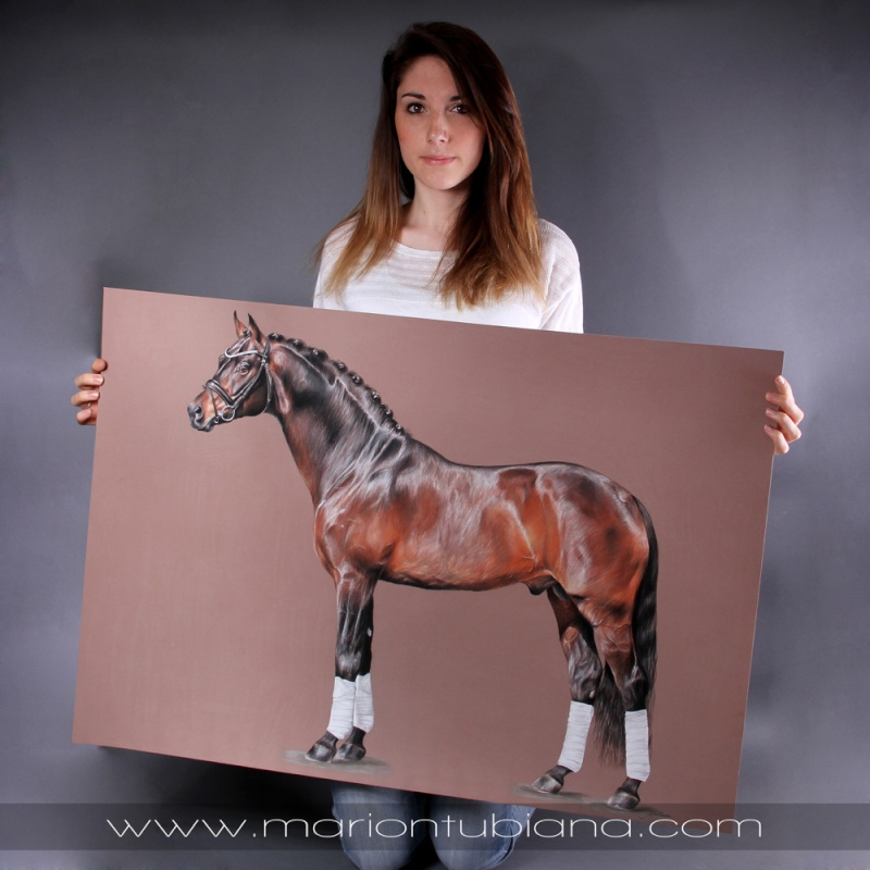Marion Tubiana - Pastel et Photographie  - Page 4 Img_5710
