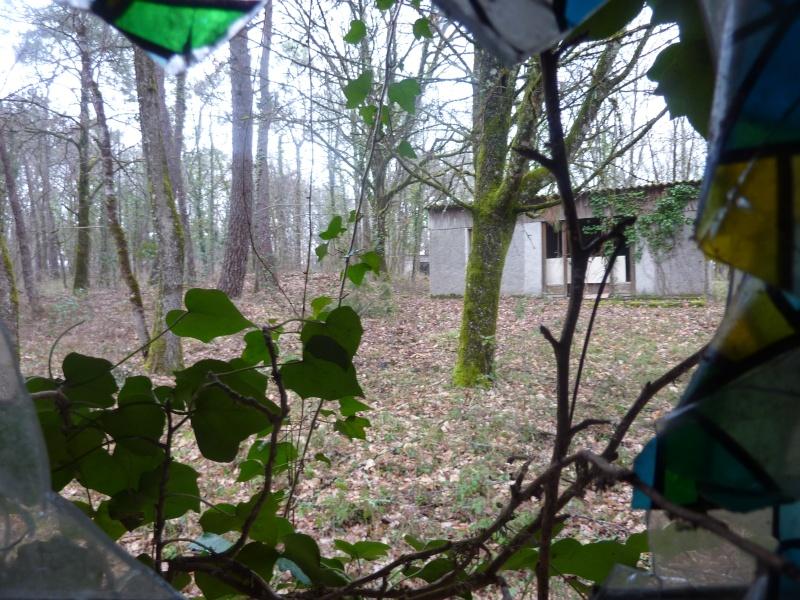 Nouveau terrain CQB/Forêt E10