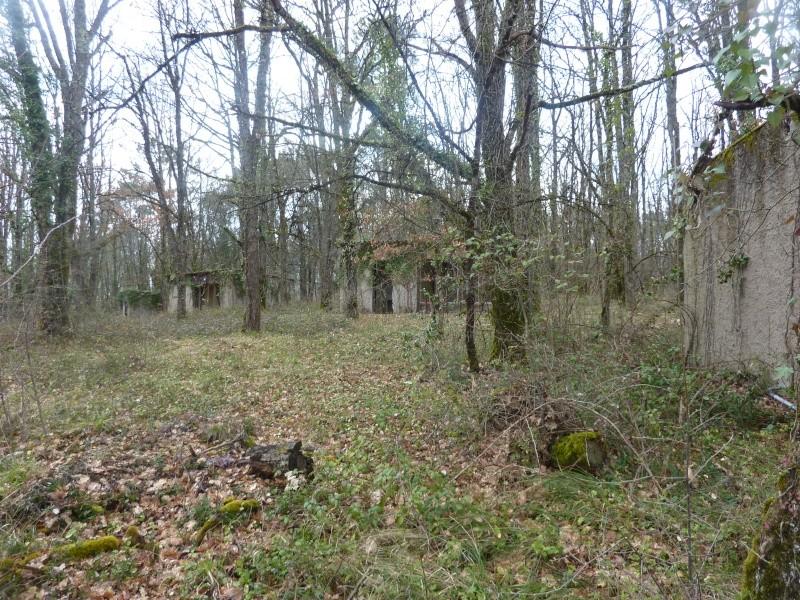 Nouveau terrain CQB/Forêt P1040710