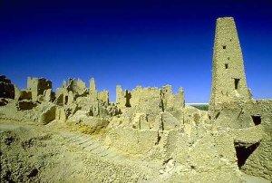 الميموني - Avec Mimouni a l'Oasis de Siwa الميموني: جميعا الي واحة سيوا Siwa310