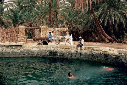 الميموني - Avec Mimouni a l'Oasis de Siwa الميموني: جميعا الي واحة سيوا Siwa410