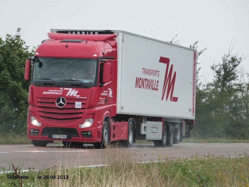 Montaville (Sille le Guillaume, 72) P1150526