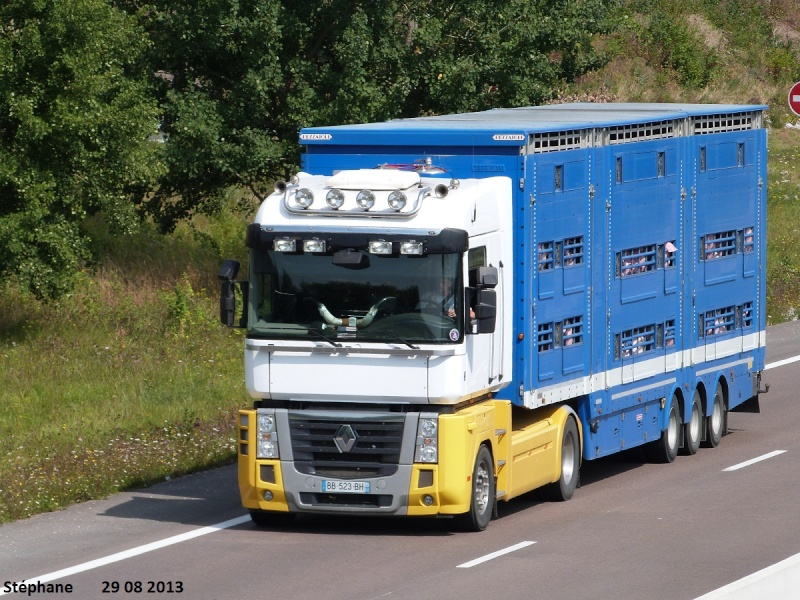 Trans Ani VI 52 (Goncourt) (52) P1150561
