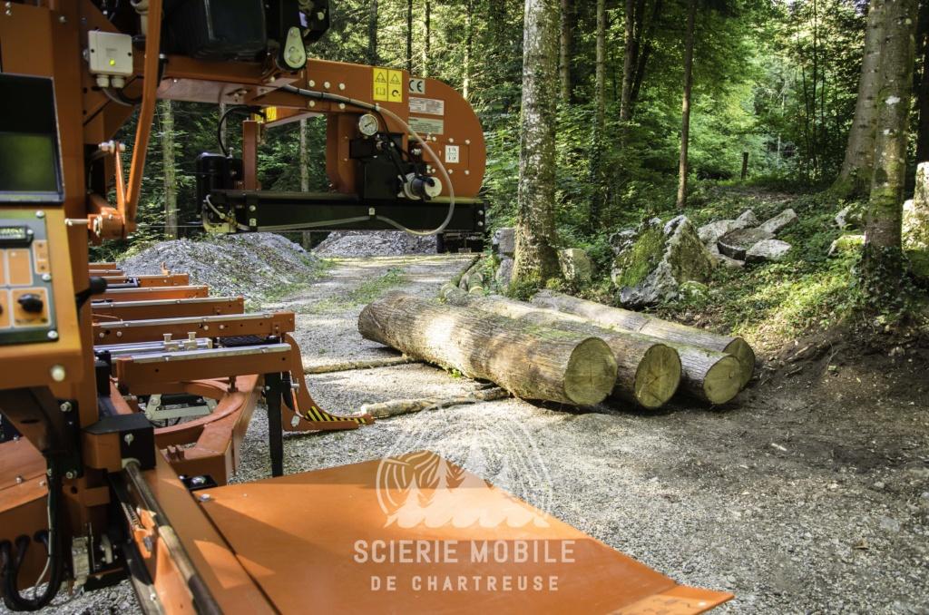 Montage forestier d'un MB Trac 800 - Page 6 Dsc_0316