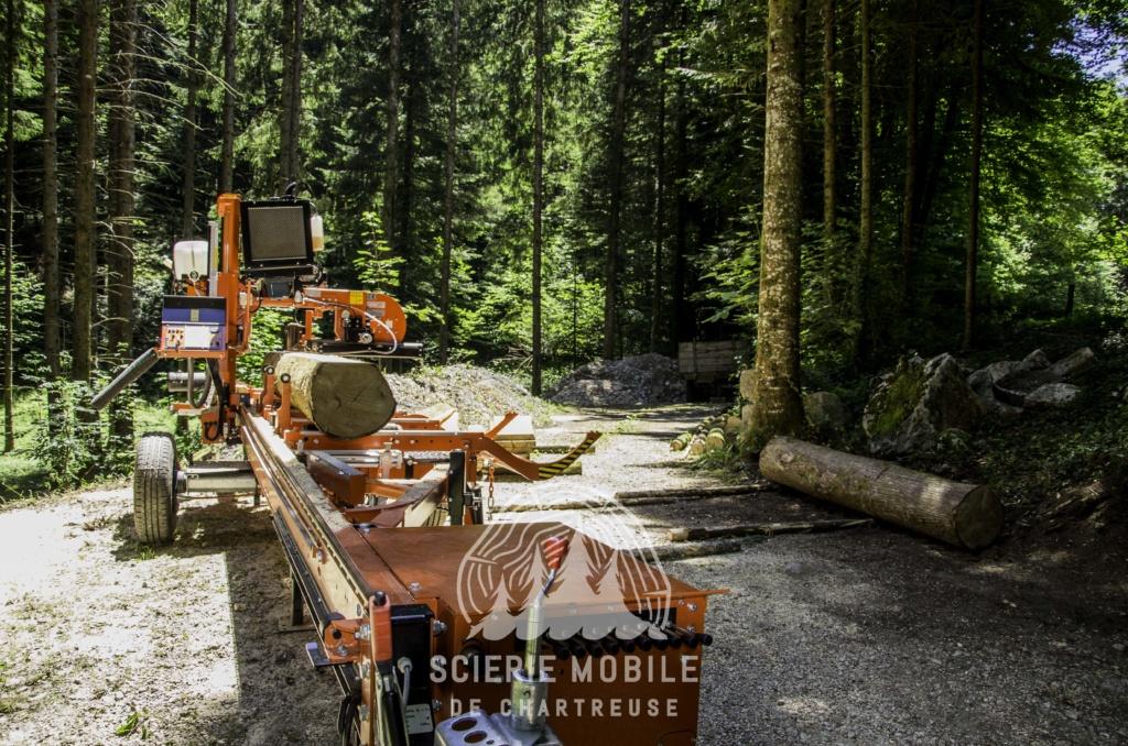 Montage forestier d'un MB Trac 800 - Page 6 Dsc_0410