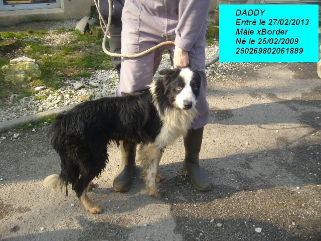 DADDY xBorder noir/blanc250269802061889 P1150429