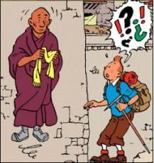 Congrès 2013 du NPA - Page 8 Tintin10