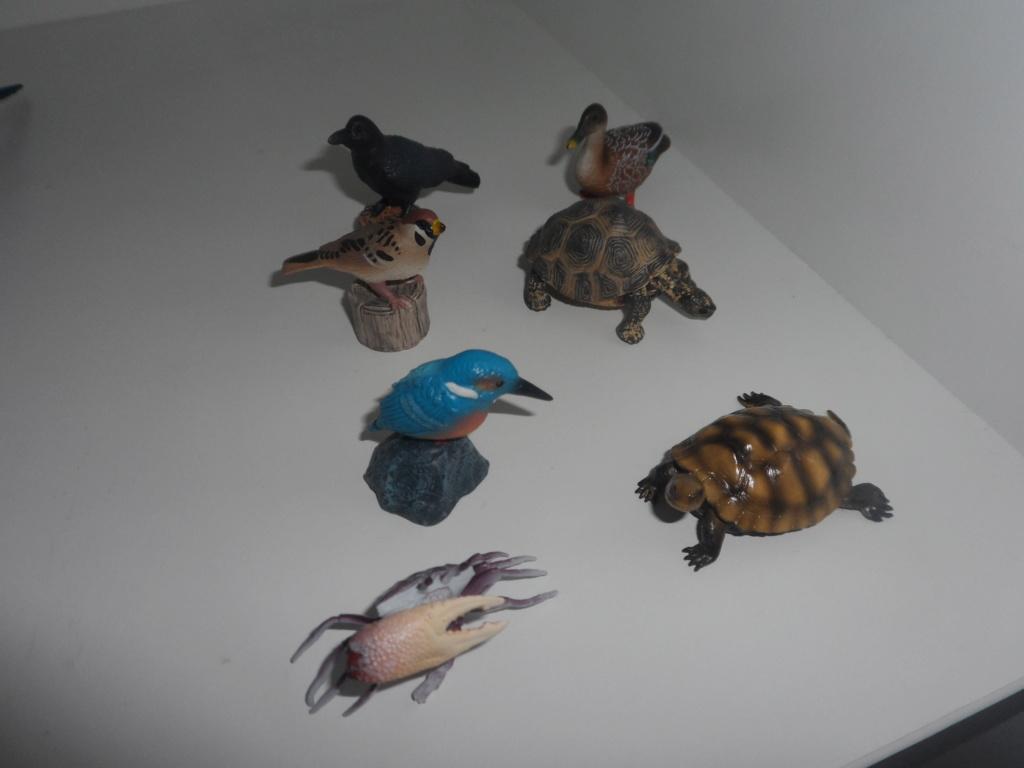 The Eikoh Miniaturplanet animals in my zoo Sam_5417