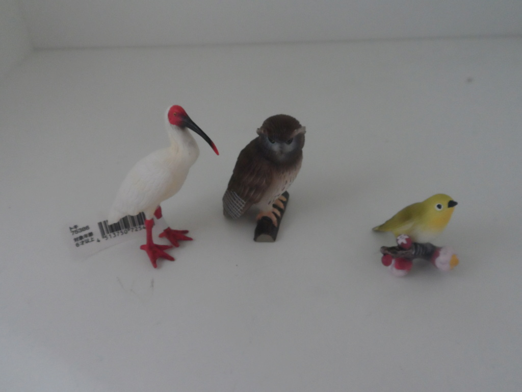 The Eikoh Miniaturplanet animals in my zoo - Page 2 Sam_5517