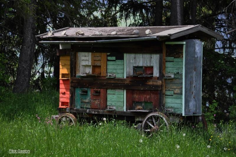 Un rucher en Autriche Dsc_0130