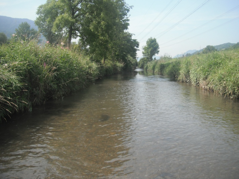 Pêche de l'ombre en Savoie. Dscf4422