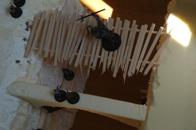 [Projet] décor des mines de la moria!! - Page 2 Dsc_5222