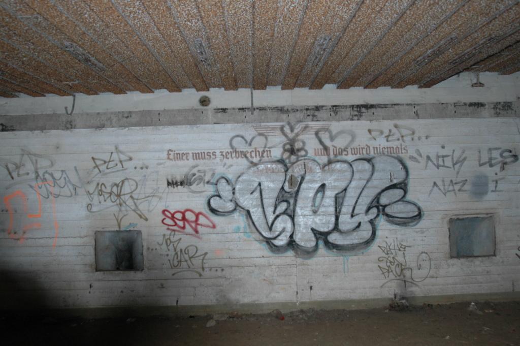 CANON SUR RAIL  Dsc_4316