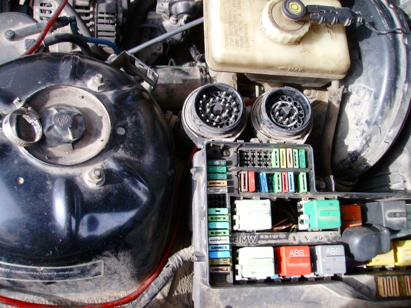 [BMW 316 i E36] Câbles d'alimentation d'actuateur de ralenti Sany0012