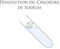 [Animation] Désolation du Chlorure Sodium  D10