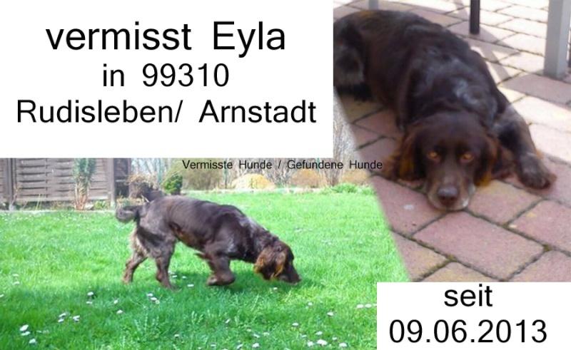 99310 Rudisleben: Vermisst Eyla10