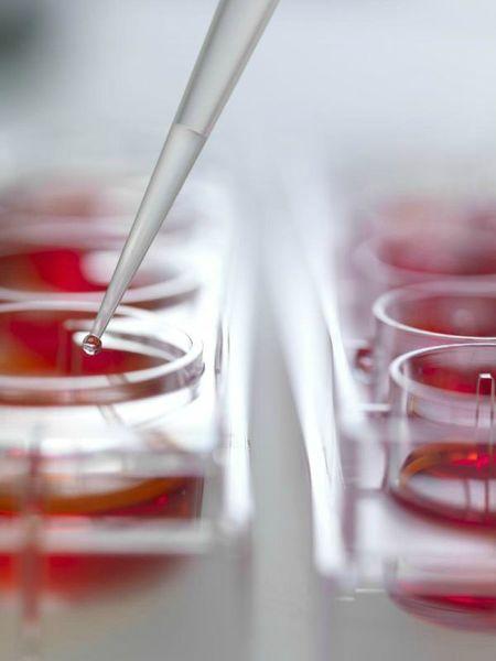 Merck admet l'inoculation du virus qui provoque le cancer  84912110