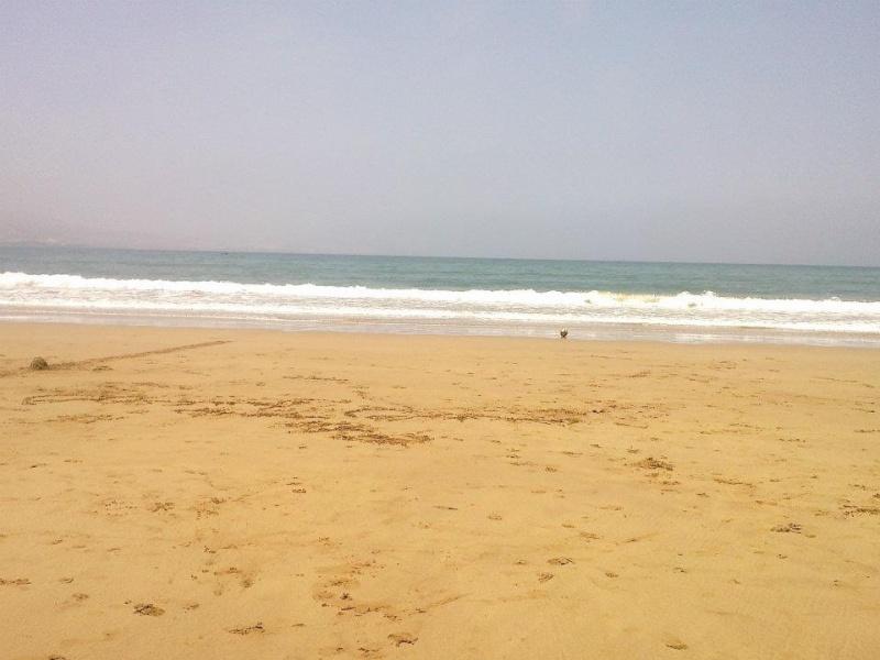 شاطىء امسوان-La plage de Imesouane-Aftas n imswan-nouvelles photos 30184010