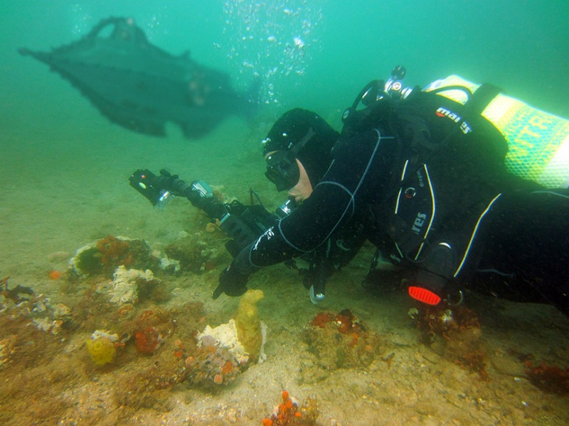Sunday Dive: 21-04-2013 Rockingham - Orient Mako Naut12