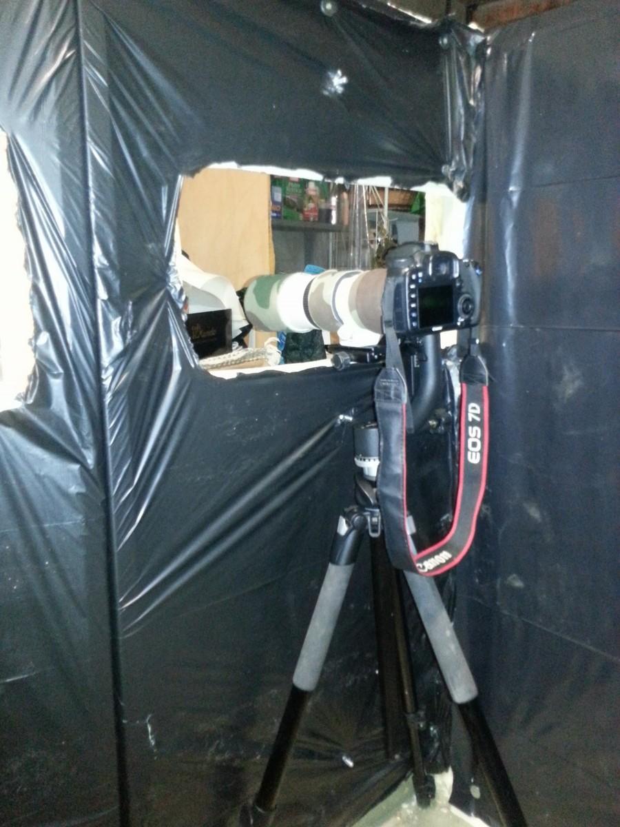 Come è nato il capanno invernale dei Luchi - Fotostoria 410