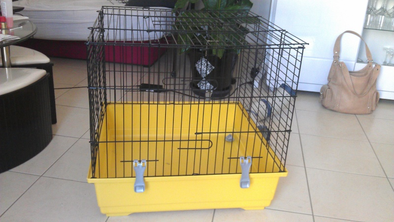 a vendre 2 cages  Imag1310