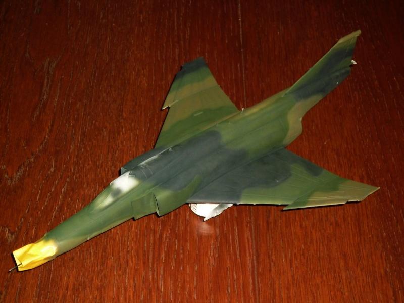 "F-4G Phantom II ""Wild Weasel"" (Hasegawa 1/48) [modèle terminé] P1060817"