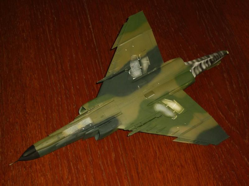 "F-4G Phantom II ""Wild Weasel"" (Hasegawa 1/48) [modèle terminé] - Page 2 P1060818"