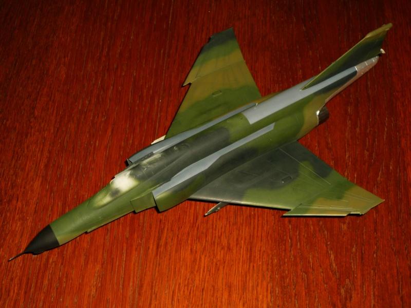 "F-4G Phantom II ""Wild Weasel"" (Hasegawa 1/48) [modèle terminé] - Page 2 P1060824"