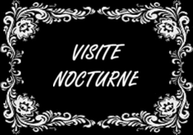 EXPOSITION DE LANTERNES DE FORTERESSE ET VISITE NOCTURNE Dsc02913