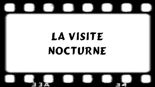 EXPOSITION DE LANTERNES DE FORTERESSE ET VISITE NOCTURNE E10