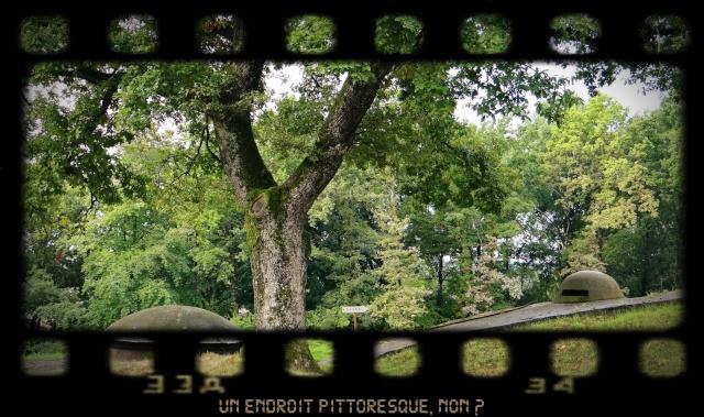 EXPOSITION DE LANTERNES DE FORTERESSE ET VISITE NOCTURNE N10