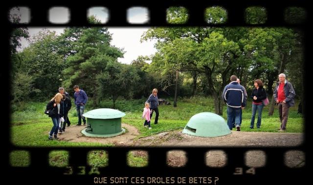 EXPOSITION DE LANTERNES DE FORTERESSE ET VISITE NOCTURNE Y11