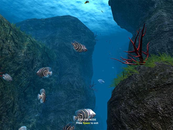 Esplora il mare e impostalo come screensaver - OceanDive 3D Oceand10