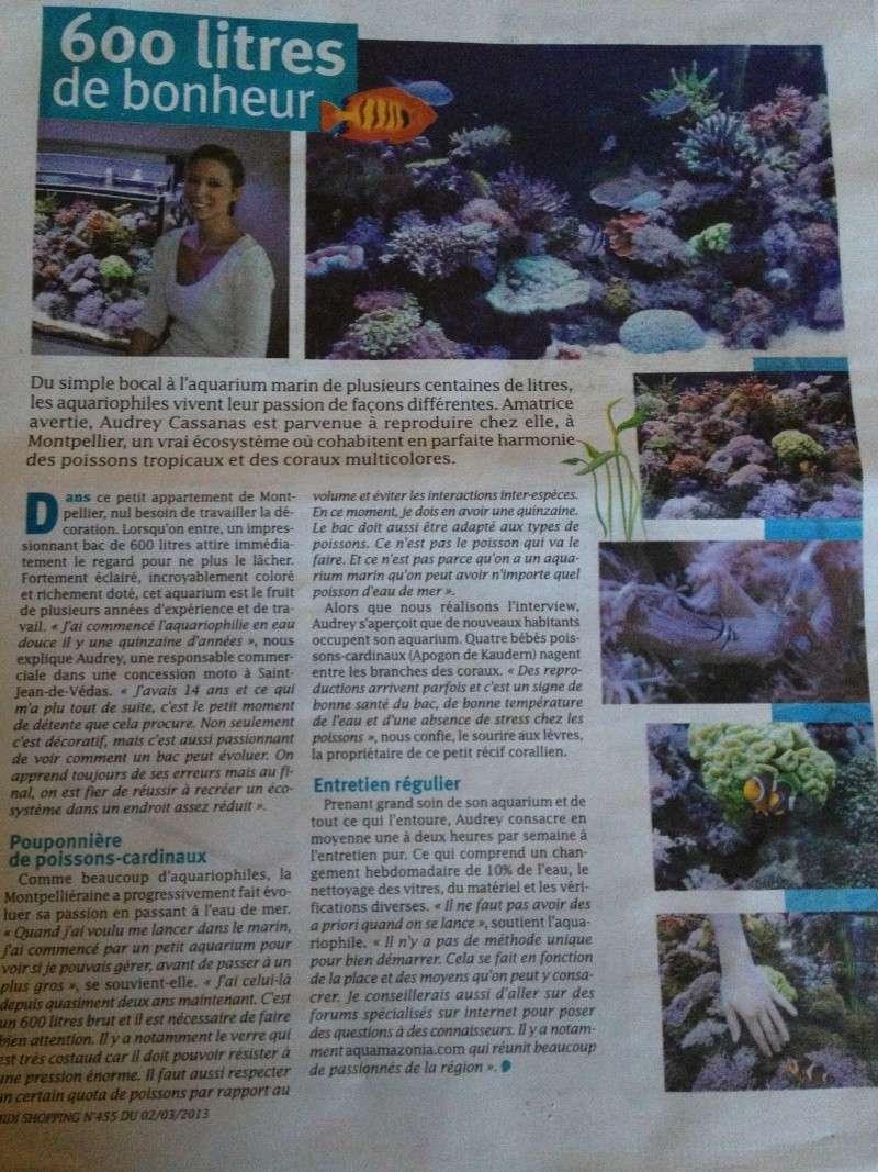 Article dans le Midi Libre de ce Jour 02 Mars 2013 Photo10