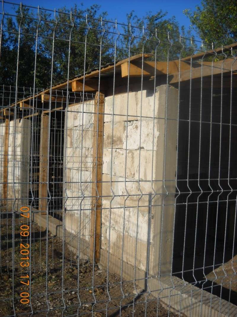 ALLEZ ON CONTINUE L'AVENTURE CONSTRUISONS LES DERNIERS  BOXES AU REFUGE DE LENUTA -  R - Page 3 Dscn6330