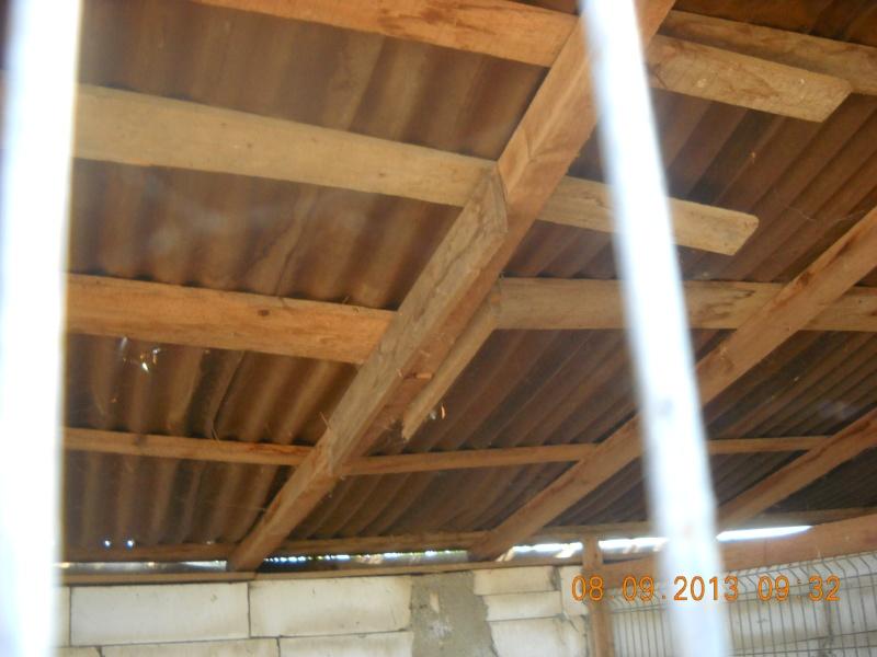 ALLEZ ON CONTINUE L'AVENTURE CONSTRUISONS LES DERNIERS  BOXES AU REFUGE DE LENUTA -  R - Page 3 Dscn6530