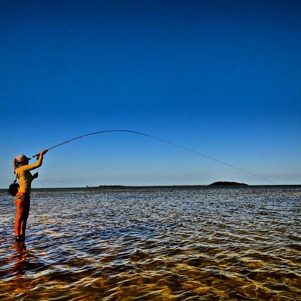 Erotika i (Fly) fishing ! - Page 6 57922510