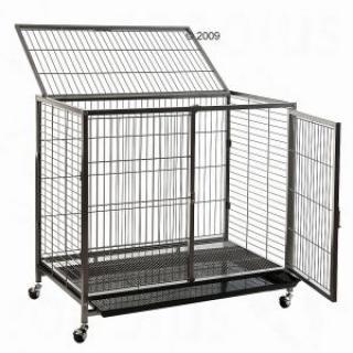 La cage tabby 1 39321510